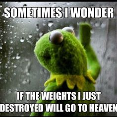 Frog Workout?