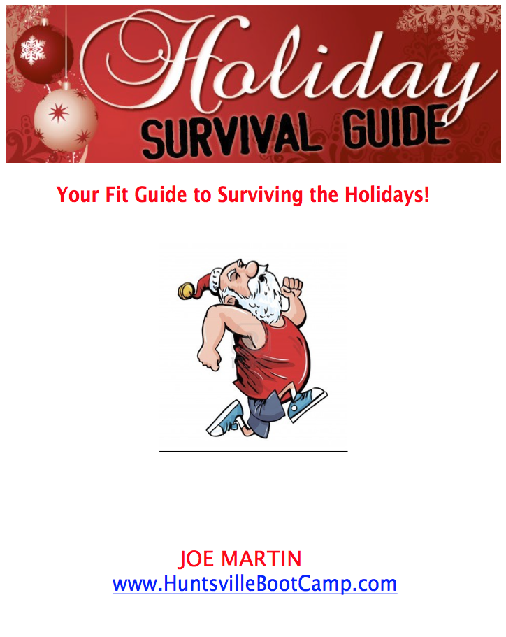 Holiday Survival Guide (gift)